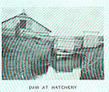 FMIB 44959 Dam at Hatchery.jpeg