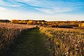 Fall Colors at Glacial Lakes State Park, Minnesota - Autumn Hiking Trail (38224942384).jpg