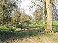 Farm track, Stoneacton - geograph.org.uk - 387949.jpg