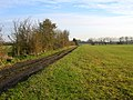 Farm track and farmland, Dry Drayton, Cambs - geograph.org.uk - 89351.jpg