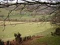 Farmland to the west of Aberffrwd - geograph.org.uk - 713258.jpg