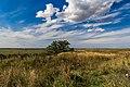 Fatyanovka, Ryazanskaya oblast', Russia, 391064 - panoramio (1).jpg