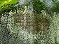Felsenlabyrinth 11 db.jpg