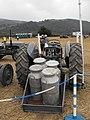 Ferguson tractor with milk churns on trailer - geograph.org.uk - 1572406.jpg