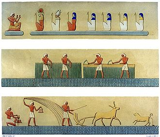 Living things in culture - Agriculture, here showing cereal harvesting and ploughing using domesticated cattle, has been critical to human civilisation since the time of Ancient Egypt. Book of the Dead, spell 110: Fields of Iaru. Scene from tomb of Ramses III (1186–1155 BC)