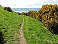 Fife Coastal Path - geograph.org.uk - 1316378.jpg