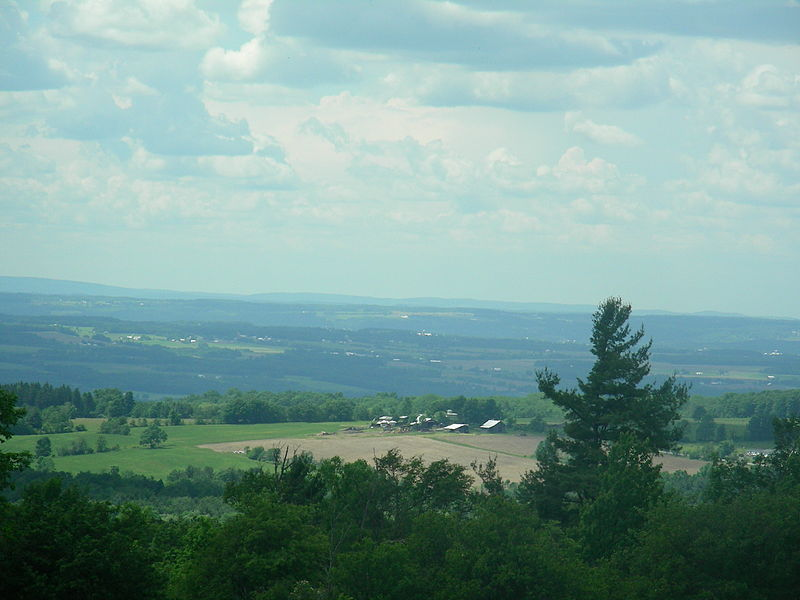 File:Finger Lakes National Forest.jpg