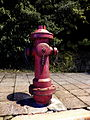 Fire Hydrant in Chenggong Road Section 5, Neihu District 20120929.JPG