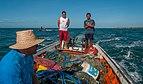 Fish in El Manglillo 4.jpg