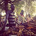 Fish seller, Lankien, South Sudan (16283581483).jpg