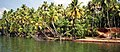 Fishing net on the Kerala backwaters (6275186598).jpg