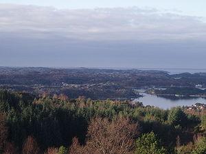 Scandinavian coastal conifer forests - Fitjar south of Bergen