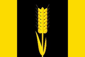 Karagaysky District - Image: Flag of Karagaysky rayon (Perm krai)