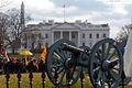 Flickr - Shinrya - Guns of the The White House.jpg