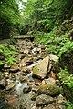 Flume Gorge (3371384093).jpg