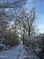 Footpath in winter - geograph.org.uk - 1625816.jpg