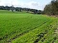 Footpath to Michaelstone - geograph.org.uk - 736386.jpg