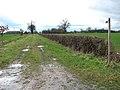 Footpath to Norgate Lane - geograph.org.uk - 1779766.jpg