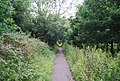 Footpath to Powder Mill Lane - geograph.org.uk - 1391853.jpg