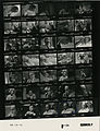 Ford B1135 NLGRF photo contact sheet (1976-08-18)(Gerald Ford Library).jpg