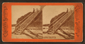 Forty Steps, Newport, R.I, from Robert N. Dennis collection of stereoscopic views.png