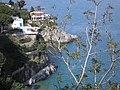 Foto ripresa tratto Vietri Cetara (foto di Peppe Pepe di Angri) - panoramio.jpg