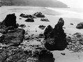 Från stranden vid Cocalito under ebb. Cocalito. Panama - SMVK - 004084.tif