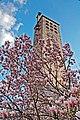 Frühling in Bludenz 006.jpg