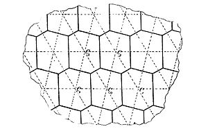 Fricke-Klein-1897-hexagon-parallelogram-1.jpg