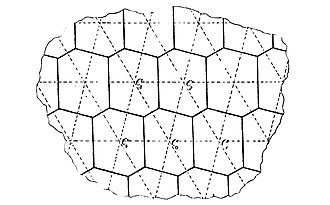 Fundamental polygon - Image: Fricke Klein 1897 hexagon parallelogram 1