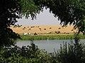 Frumusani - panoramio - Adrian RESMERITA (1).jpg