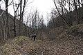 G. Goryachiy Klyuch, Krasnodarskiy kray, Russia - panoramio (7).jpg