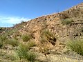 GT ROAD - panoramio (2).jpg