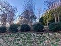 Galloway-Radford House, Brevard, NC (46617153412).jpg