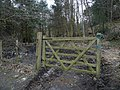Gate - geograph.org.uk - 1190430.jpg