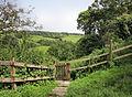 Gate in Petworth.jpg