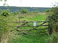 Gate to Open Access land, Troutsdale - geograph.org.uk - 1506981.jpg