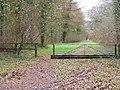 Gated bridleway, Great Ridge - geograph.org.uk - 1202008.jpg