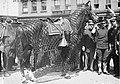 General Frederick Dent Grant's Horse1.jpg