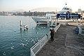 Geneve the Environmental Friendly City - panoramio.jpg