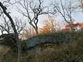Gfp-Minnesota-beaver-creek-valley-view-of-hill-top.jpg