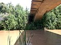 Gila River @ Florence-Kelvin Bridge, A View from Under the Bridge - panoramio.jpg