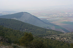 Mount Gilboa - Mount Gilboa