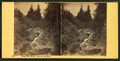 Glen Ellis River, above the Fall, from Robert N. Dennis collection of stereoscopic views.png
