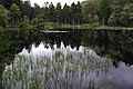 Glencoe Lochan. - panoramio (4).jpg