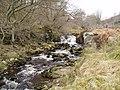 Glendue Burn - geograph.org.uk - 497112.jpg