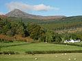 Goatfell from near Glenrosa farm - geograph.org.uk - 77338.jpg