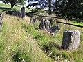 Goles Stone Row - geograph.org.uk - 512181.jpg