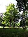 Gradski Park-Skopje (154).JPG