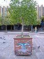 Graffiti Rosario - No tiren que hay pibes comiendo.jpg
